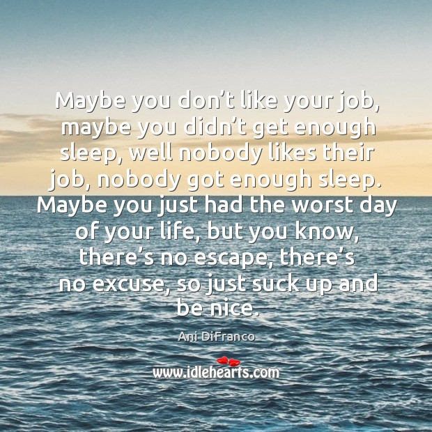 Maybe you don't like your job, maybe you didn't get enough sleep Ani DiFranco Picture Quote