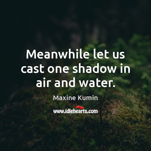 Image, Meanwhile let us cast one shadow in air and water.