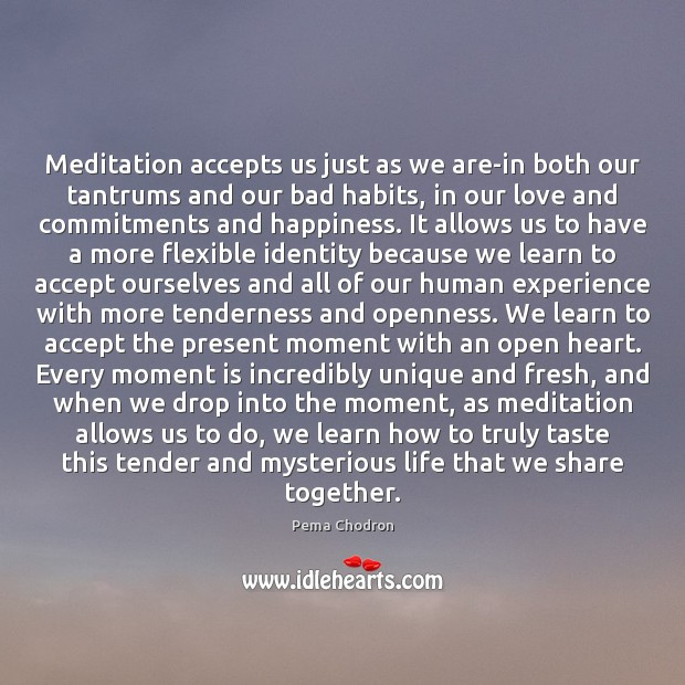 Image, Meditation accepts us just as we are-in both our tantrums and our