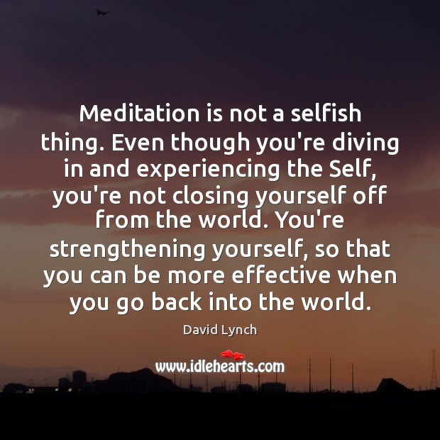 Meditation is not a selfish thing. Even though you're diving in and David Lynch Picture Quote