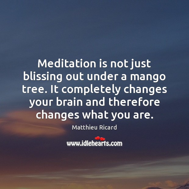 Meditation is not just blissing out under a mango tree. It completely Matthieu Ricard Picture Quote