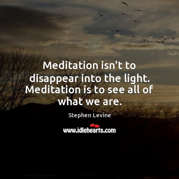 Image, Meditation isn't to disappear into the light. Meditation is to see all of what we are.