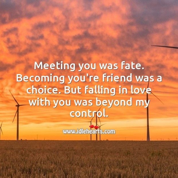 Meeting you was fate. Becoming you're friend was a choice. Romantic Messages Image