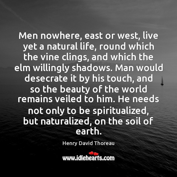 Men nowhere, east or west, live yet a natural life, round which Henry David Thoreau Picture Quote