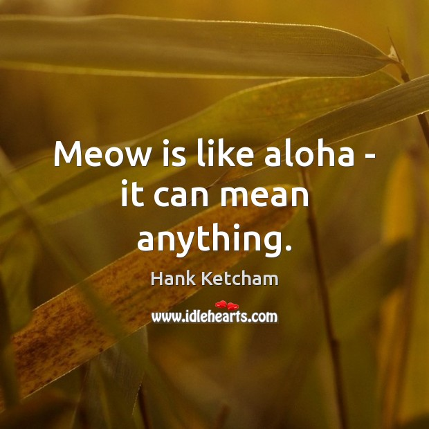 Image, Meow is like aloha – it can mean anything.