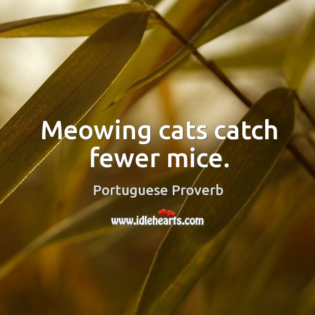 Meowing cats catch fewer mice. Image