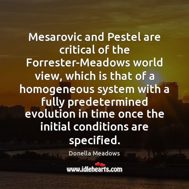Mesarovic and Pestel are critical of the Forrester-Meadows world view, which is Image