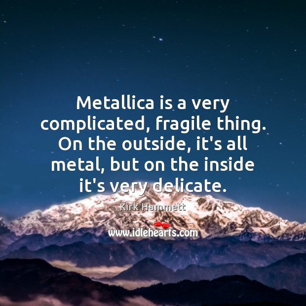 Image, Metallica is a very complicated, fragile thing. On the outside, it's all