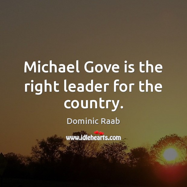 Michael Gove is the right leader for the country. Image