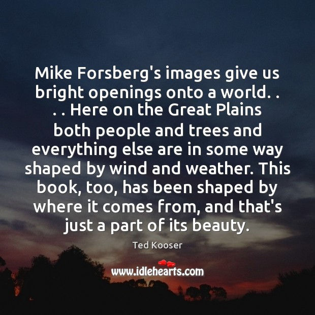 Mike Forsberg's images give us bright openings onto a world. . . . Here on Image