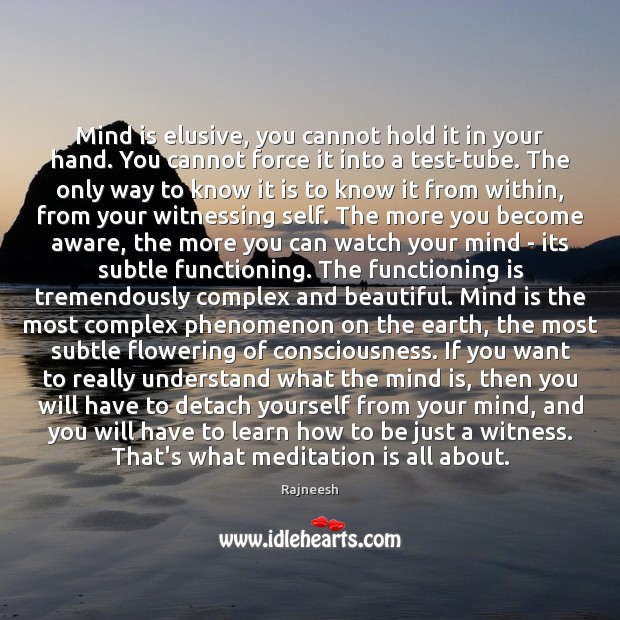 Image, Mind is elusive, you cannot hold it in your hand. You cannot