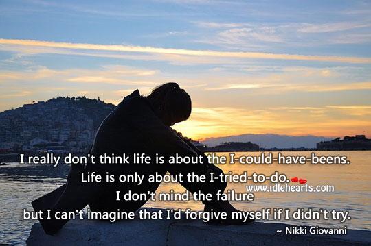 I Don't Mind The Failure
