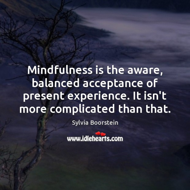 Mindfulness is the aware, balanced acceptance of present experience. It isn't more Image