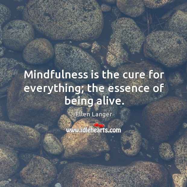 Mindfulness is the cure for everything; the essence of being alive. Image