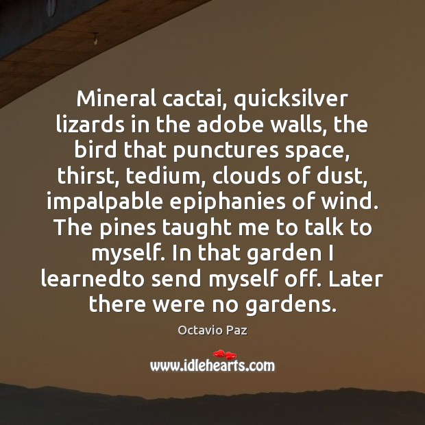 Mineral cactai, quicksilver lizards in the adobe walls, the bird that punctures Octavio Paz Picture Quote