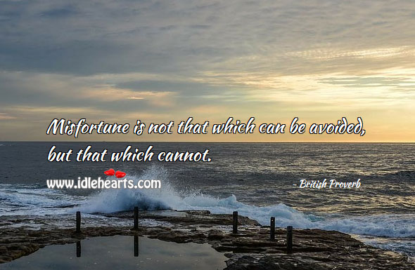Misfortune is not that which can be avoided, but that which cannot. Image