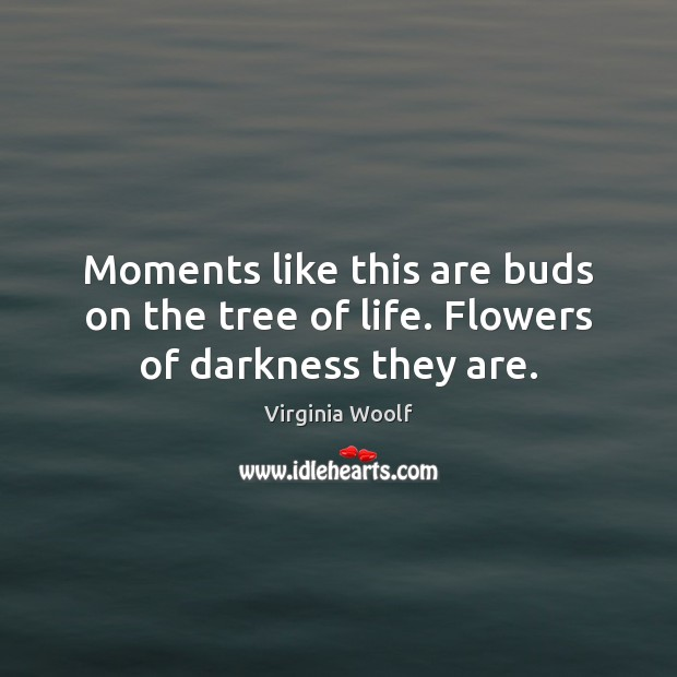 Moments like this are buds on the tree of life. Flowers of darkness they are. Image