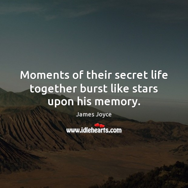 Moments of their secret life together burst like stars upon his memory. Image