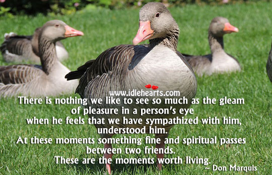 The moments worth living. Don Marquis Picture Quote