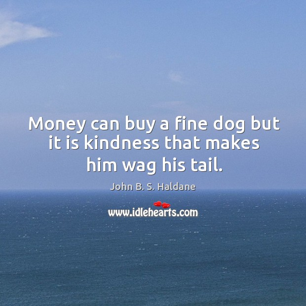 Money can buy a fine dog but it is kindness that makes him wag his tail. John B. S. Haldane Picture Quote