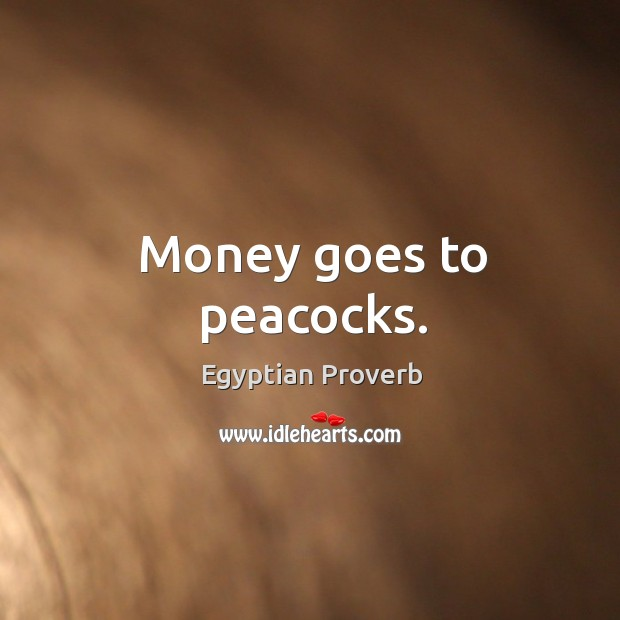 Money goes to peacocks. Egyptian Proverbs Image