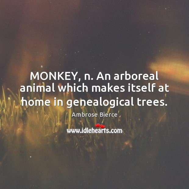 Image, MONKEY, n. An arboreal animal which makes itself at home in genealogical trees.
