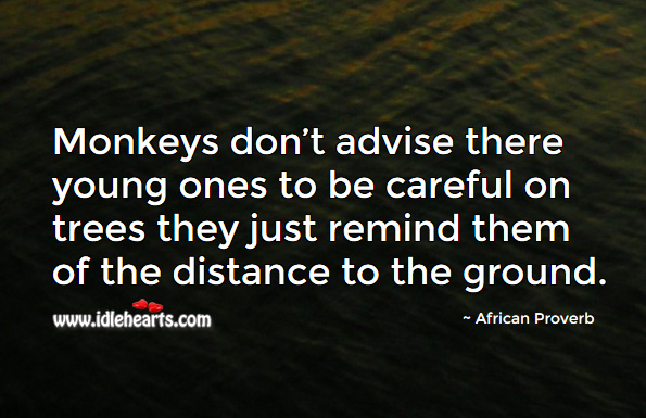 Monkeys don't advise there young ones to be careful on trees they just remind them of the distance to the ground. African Proverbs Image