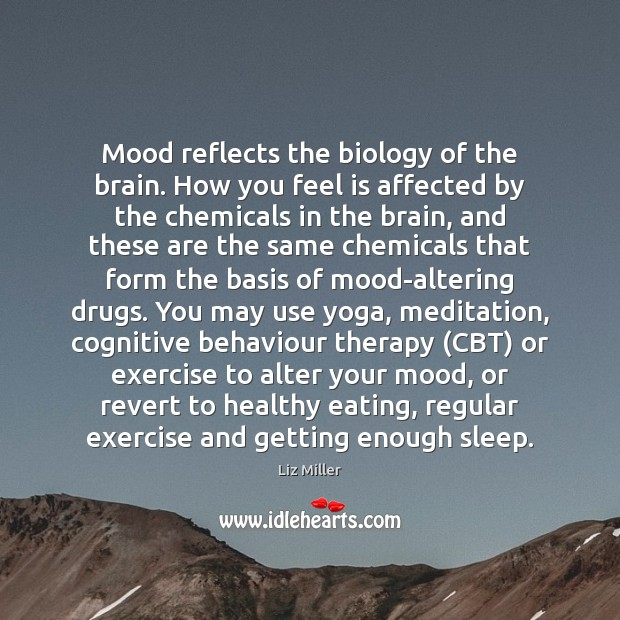 Mood reflects the biology of the brain. How you feel is affected Liz Miller Picture Quote
