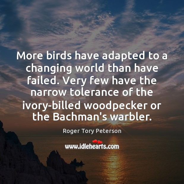 Image, More birds have adapted to a changing world than have failed. Very