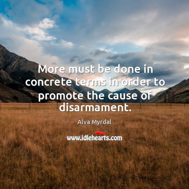 Image, More must be done in concrete terms in order to promote the cause of disarmament.