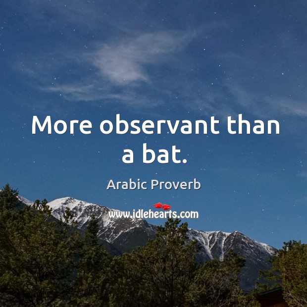 Image, More observant than a bat.