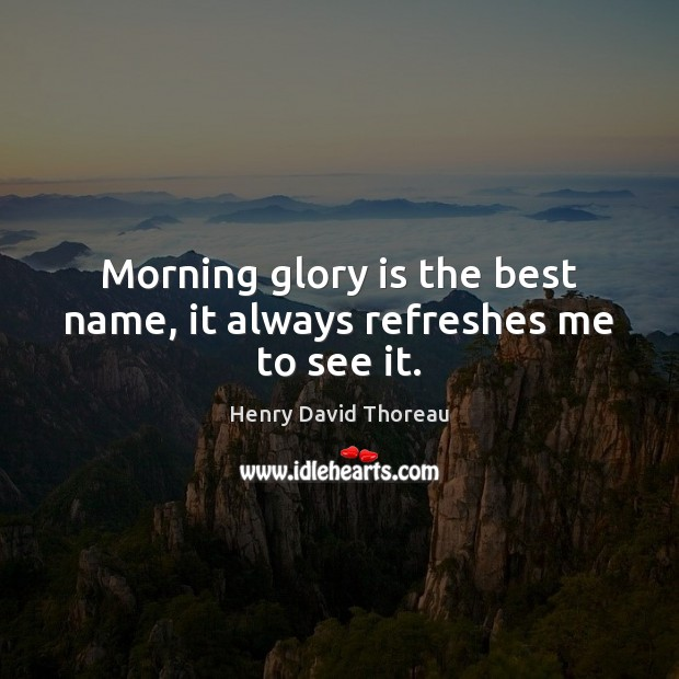 Picture Quote by Henry David Thoreau