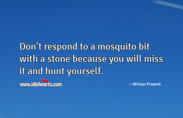 Don't respond to a mosquito bit with a stone because you you will miss it and hunt yourself. African Proverbs Image