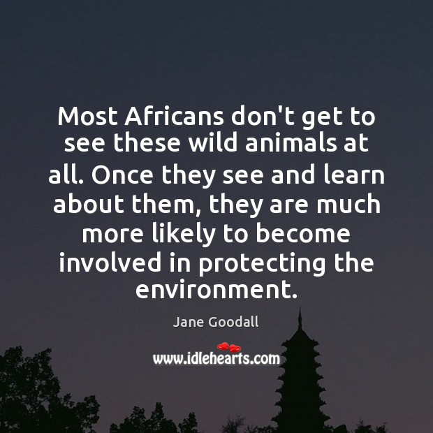 Most Africans don't get to see these wild animals at all. Once Jane Goodall Picture Quote
