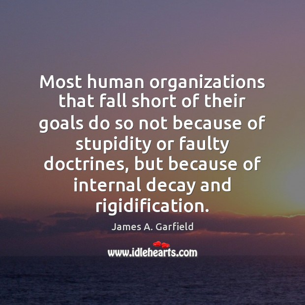 Image, Most human organizations that fall short of their goals do so not