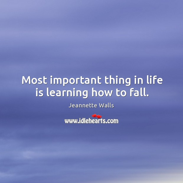 Most important thing in life is learning how to fall. Image