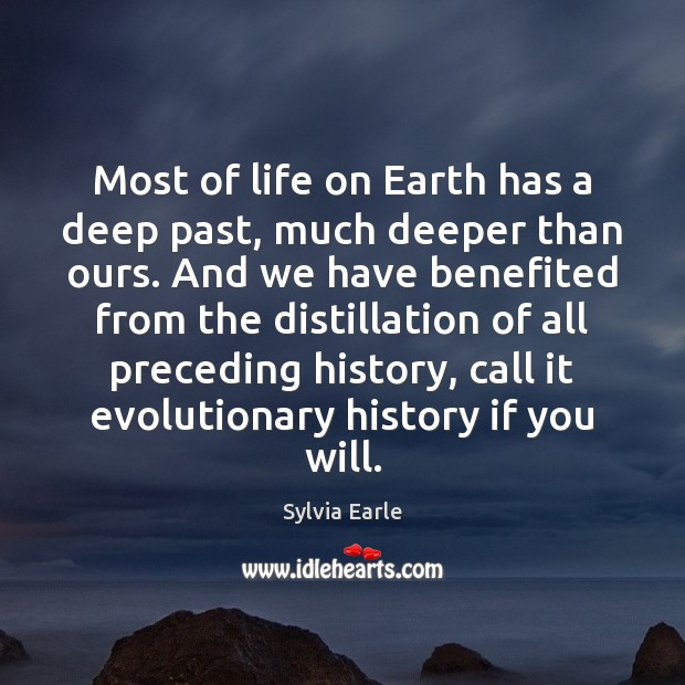 Image, Most of life on Earth has a deep past, much deeper than