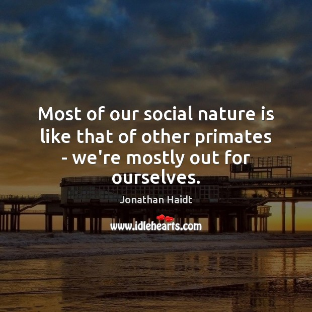 Most of our social nature is like that of other primates – we're mostly out for ourselves. Image