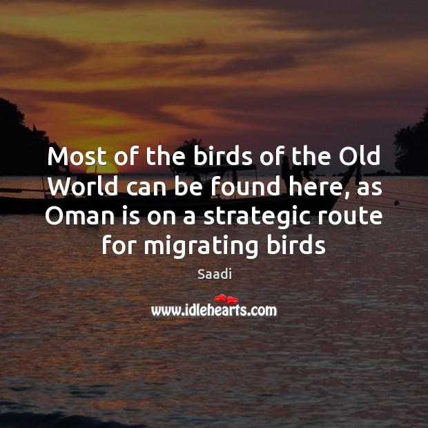 Most of the birds of the Old World can be found here, Saadi Picture Quote
