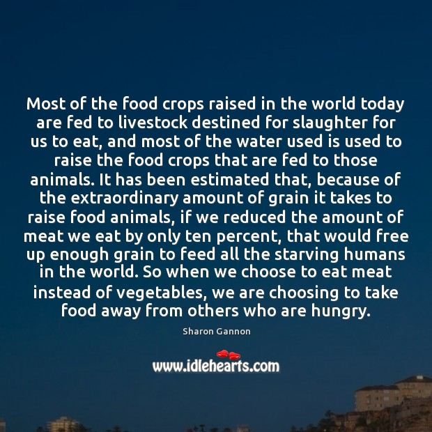 Most of the food crops raised in the world today are fed Sharon Gannon Picture Quote