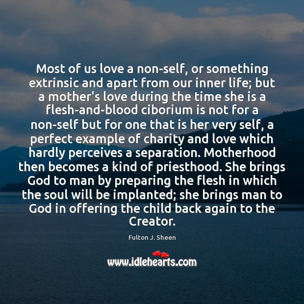 Most of us love a non-self, or something extrinsic and apart from Fulton J. Sheen Picture Quote