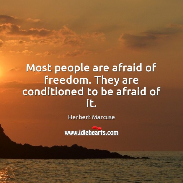 Most people are afraid of freedom. They are conditioned to be afraid of it. Herbert Marcuse Picture Quote