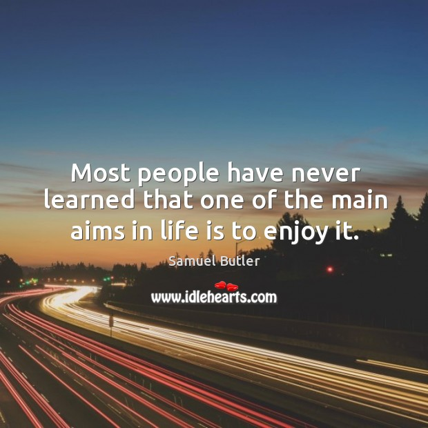 Most people have never learned that one of the main aims in life is to enjoy it. Image