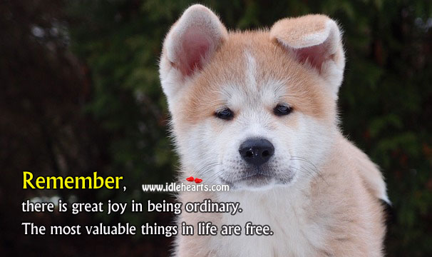 The Most Valuable Things In Life Are Free., Free, Life, Values