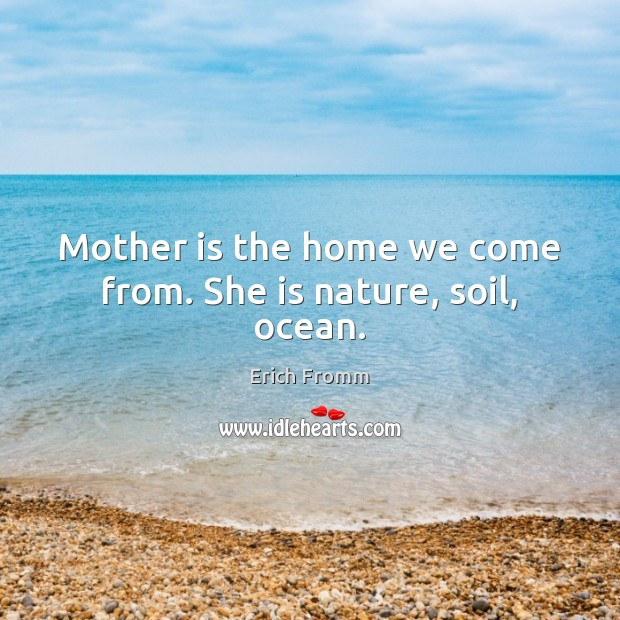 Mother is the home we come from. She is nature, soil, ocean. Image