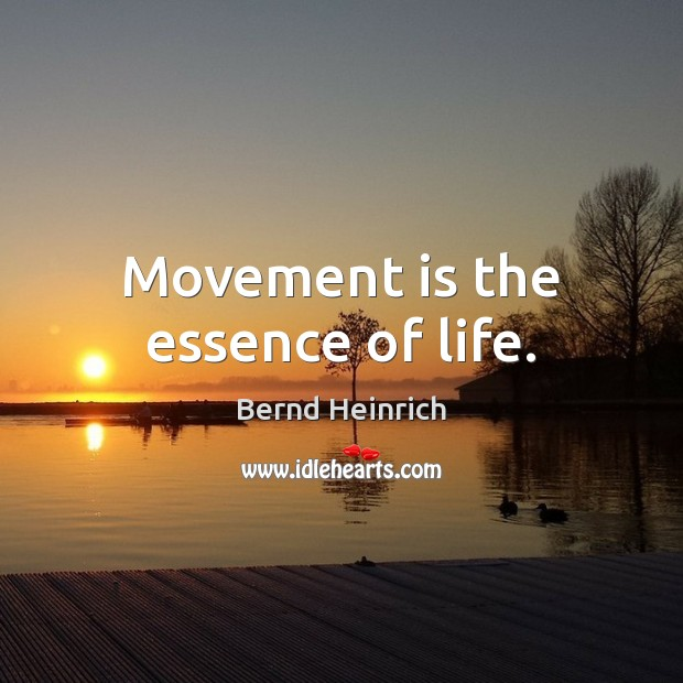 Image, Movement is the essence of life.