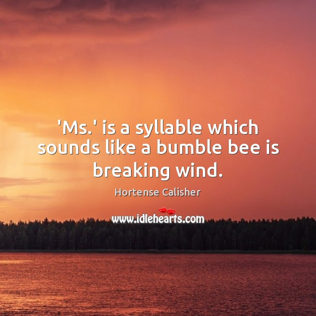 'Ms.' is a syllable which sounds like a bumble bee is breaking wind. Image