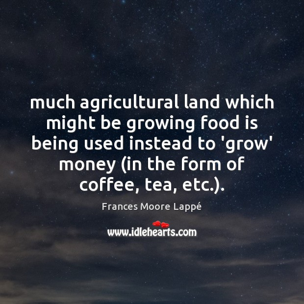 Much agricultural land which might be growing food is being used instead Image