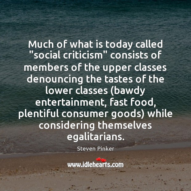 """Much of what is today called """"social criticism"""" consists of members of Image"""