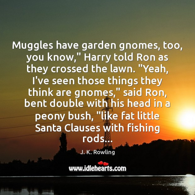 "Image, Muggles have garden gnomes, too, you know,"" Harry told Ron as they"